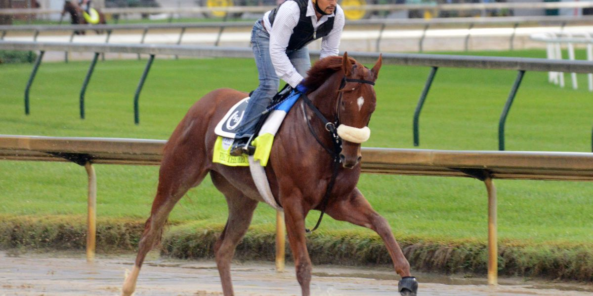 The 146th Kentucky Derby will be the last for horses on the drug Lasix