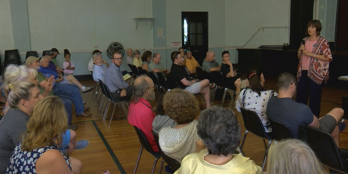 Paristown Pointe neighbors express criticism, concerns with Urban Government Center project