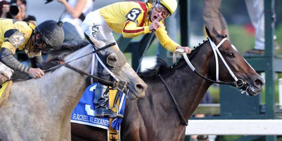 Rachel Alexandra: To breed or not to breed after Rachel's Valentina?