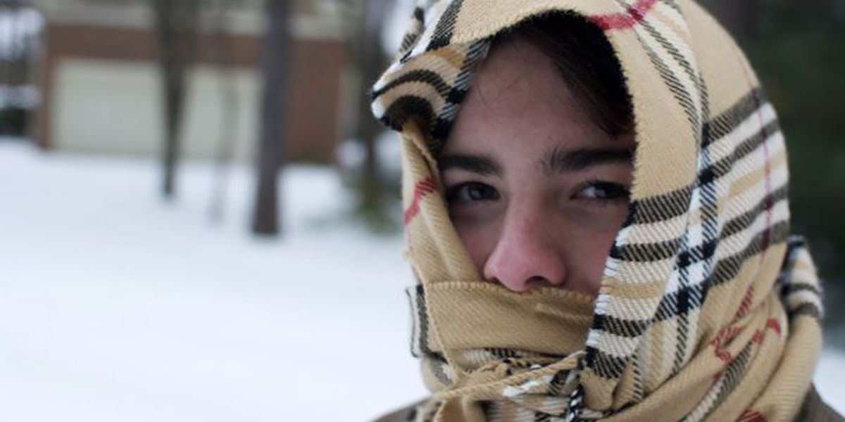 Bookmark This: Your winter storm survival guide