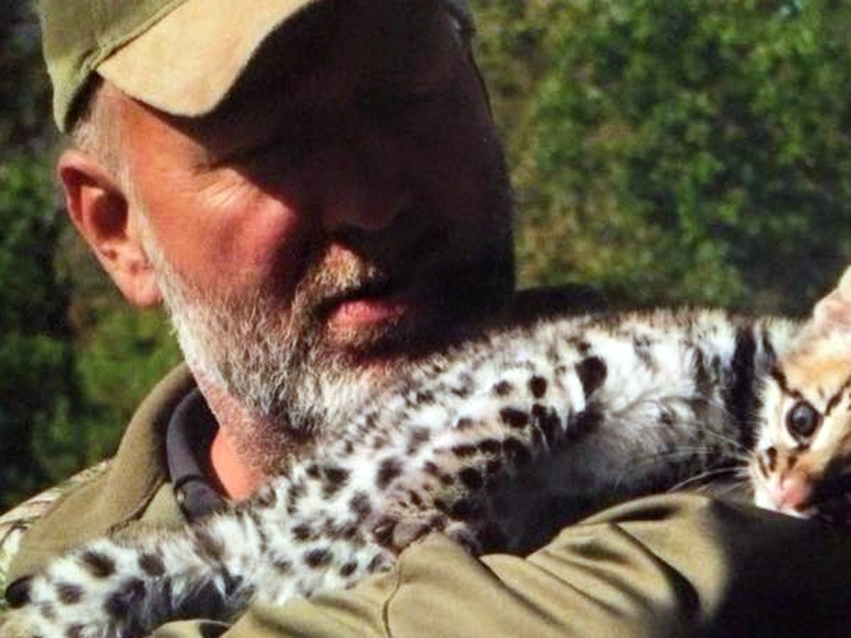 At least 15 exotic animals died being brought across the US by Tim Stark, documents show