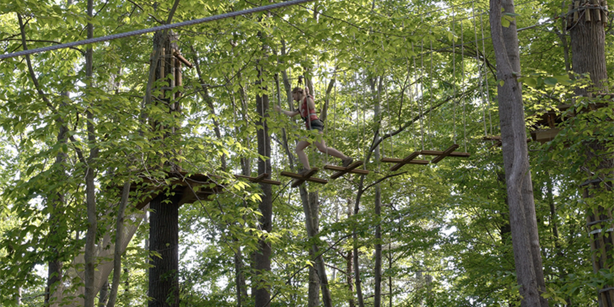 Kentucky Kingdom to operate zipline through Jefferson Memorial Forest