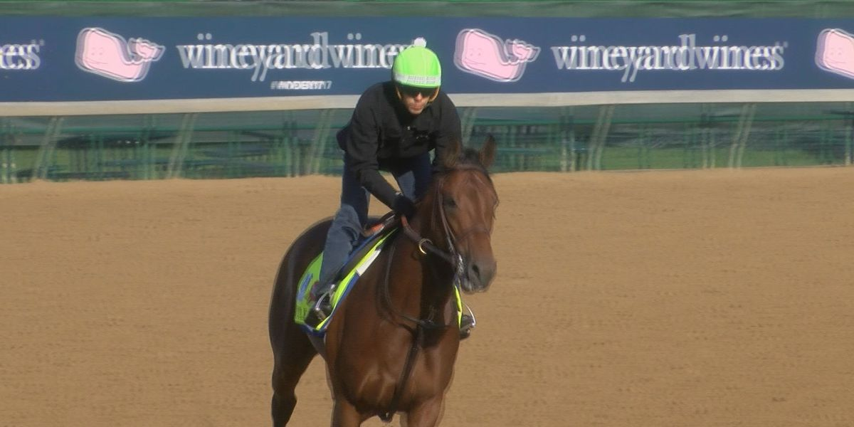 G1 winner Battle of Midway euthanized after breakdown in training