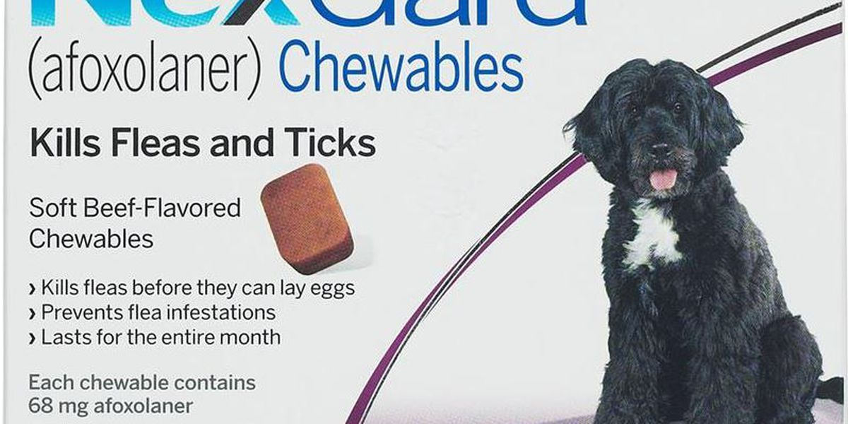 Some flea, tick meds causing seizures in pets, FDA warns