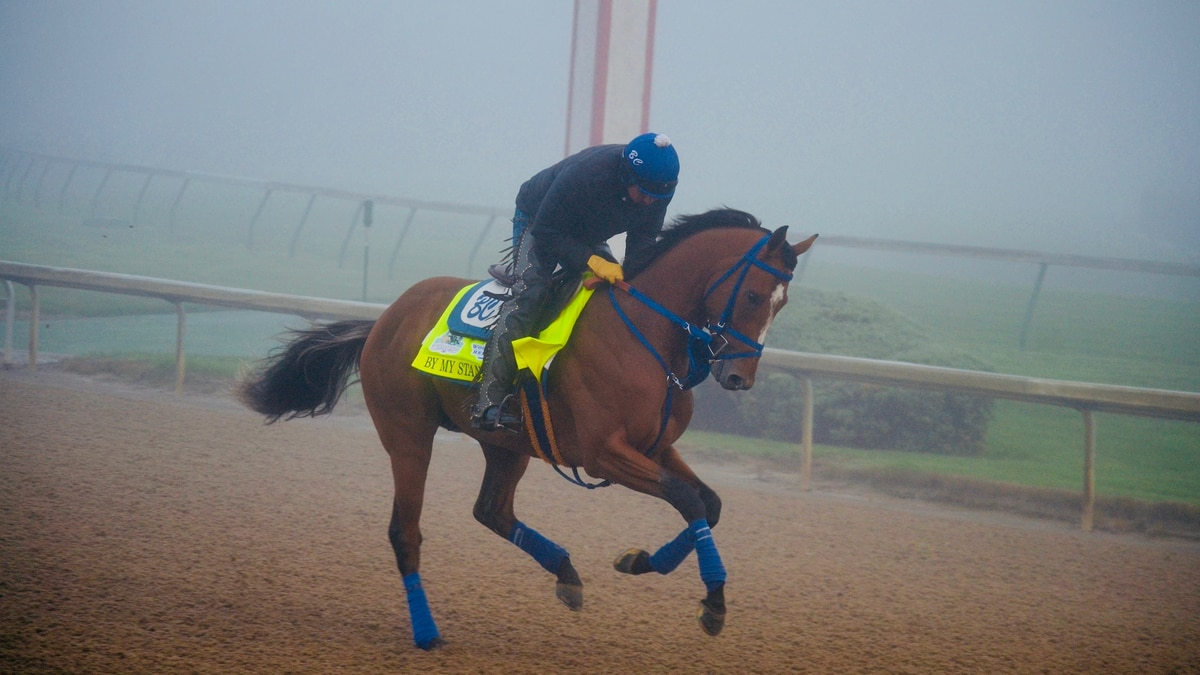 By My Standards emerges as Derby 145 'buzz horse'