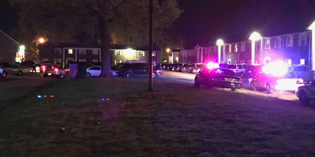Person shot in south Louisville off New Cut Road
