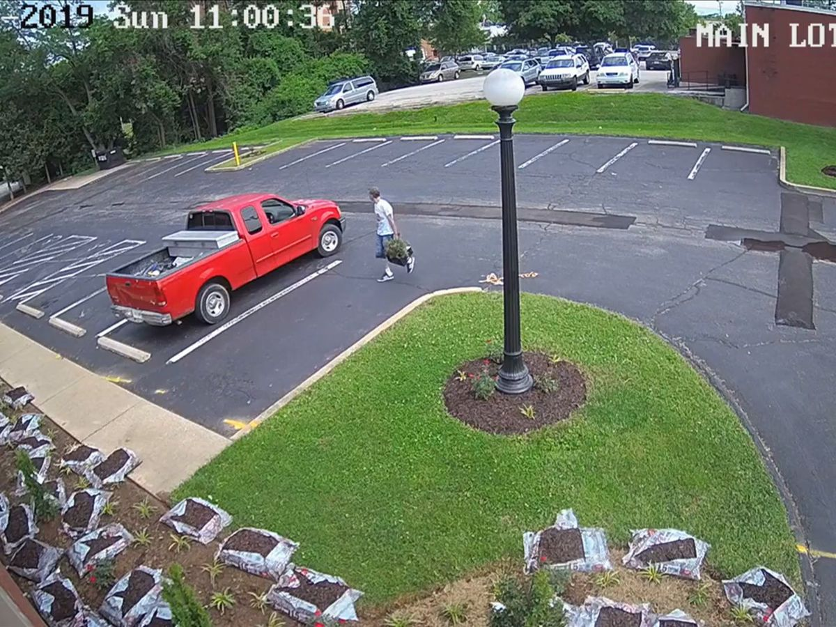 Caught on camera: Landscaping stolen from Louisville non-profit