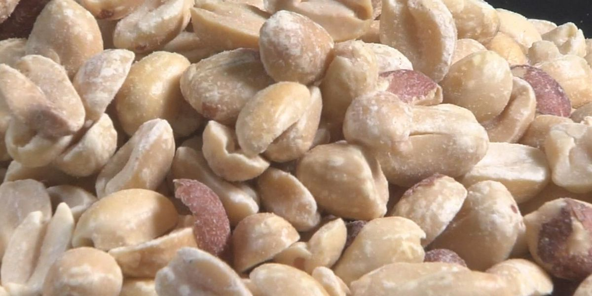 First ever drug approved to treat peanut allergies