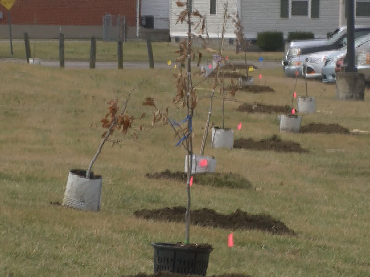 TreesLouisville to plant 140 trees at Newburg Middle School