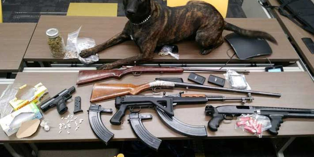 LMPD credits K9 with assist in recovery of drugs, guns