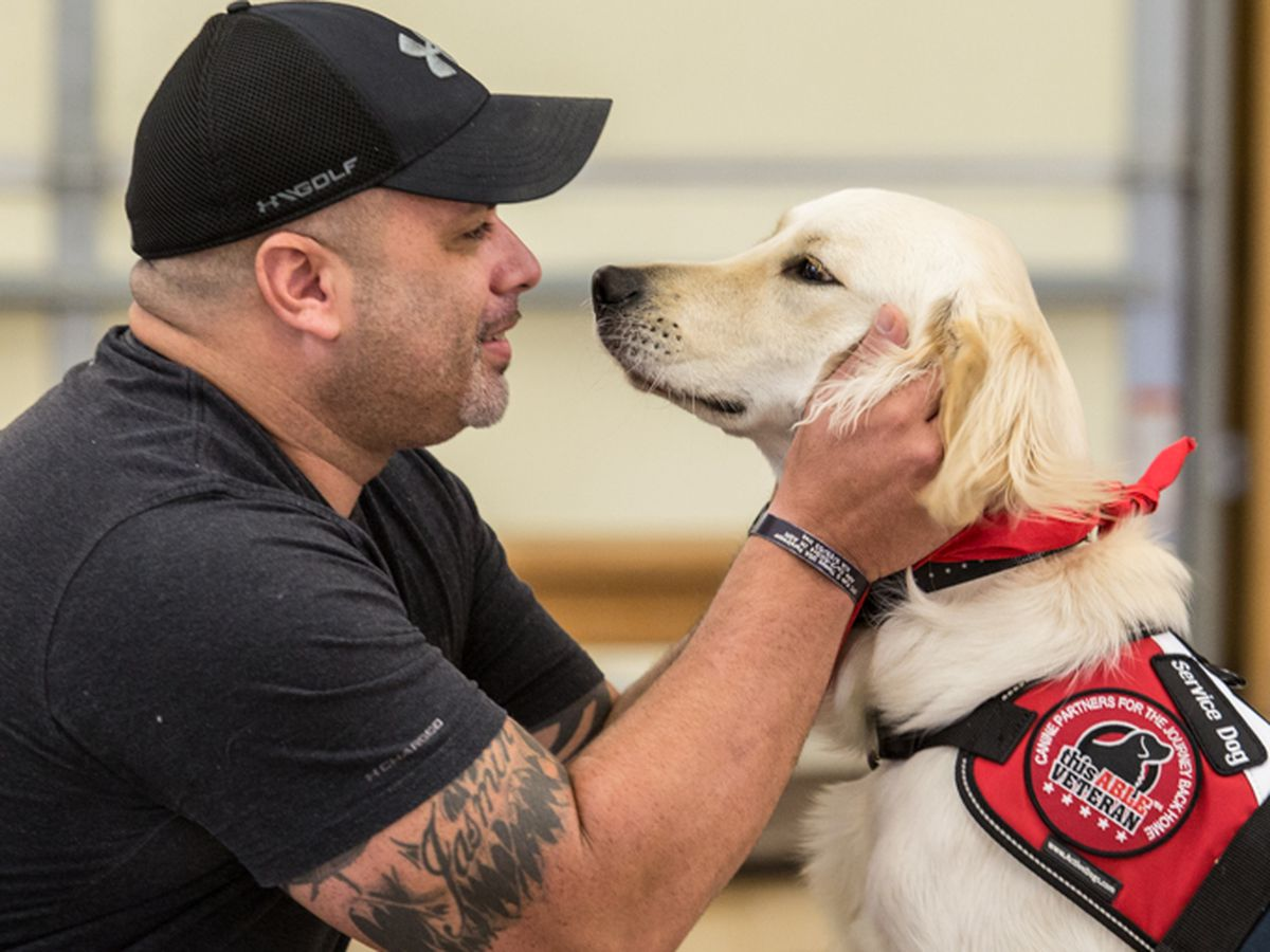 Lawmaker proposing legislation to crack down on service dog misuse