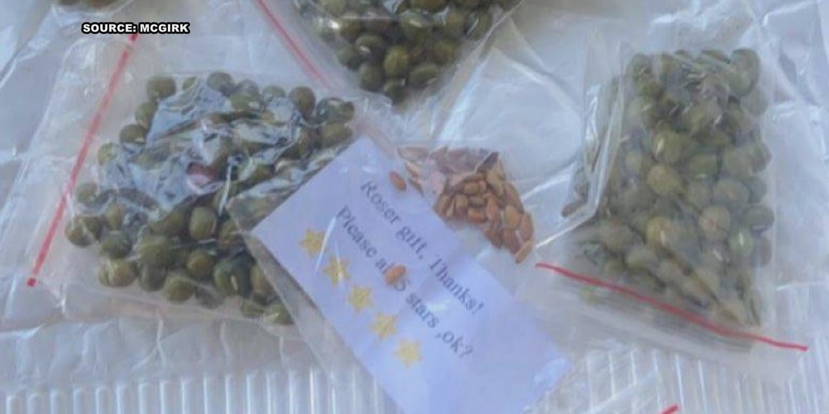 Mysterious seeds sent to Bardstown woman; USDA may have answers