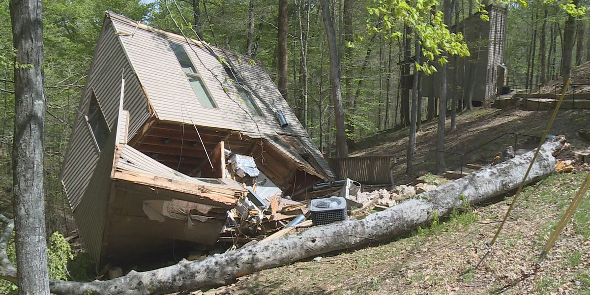 Louisville family escapes cabin destroyed by falling tree at Lake Cumberland
