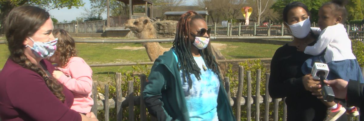 Louisville Zoo looking to embody a return to normal with pandemic-friendly events