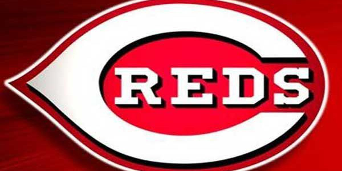 Cincinnati Reds' Jairo Capellan killed in vehicle crash; two others hospitalized