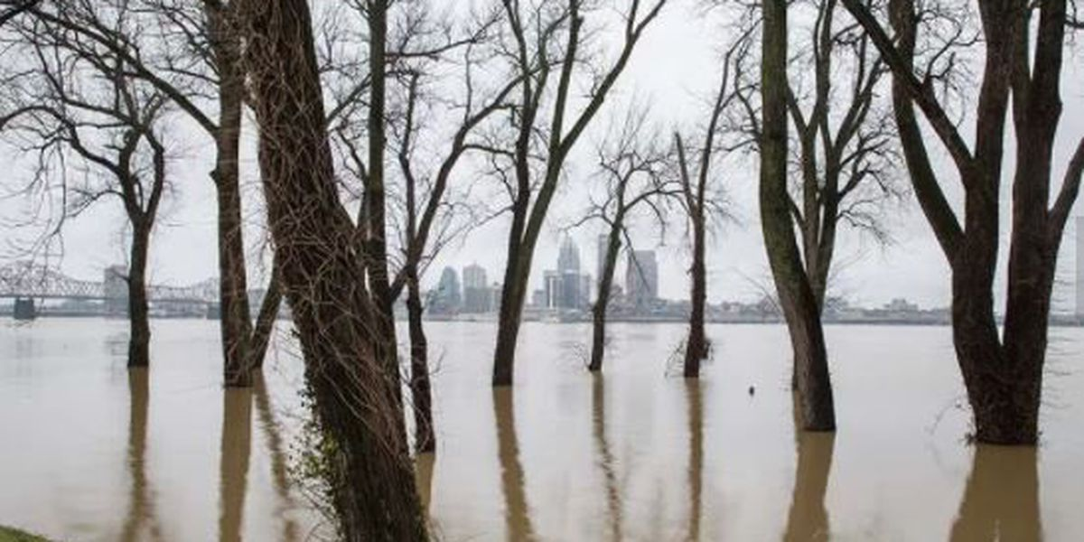 IMAGES: Flooding around WAVE Country