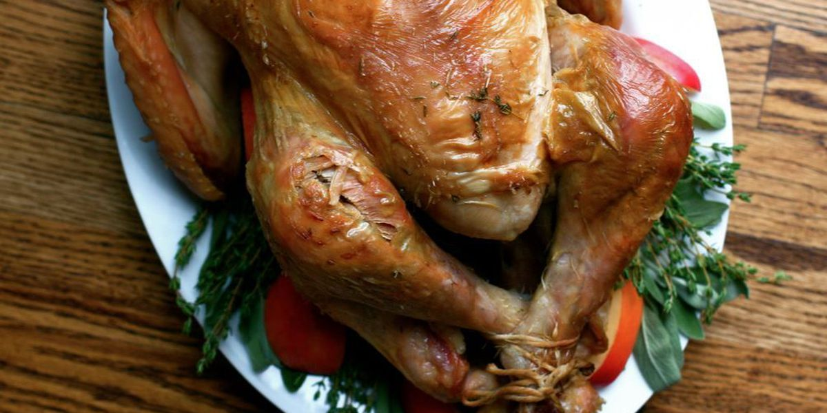 Tips to safely cook your Thanksgiving turkey