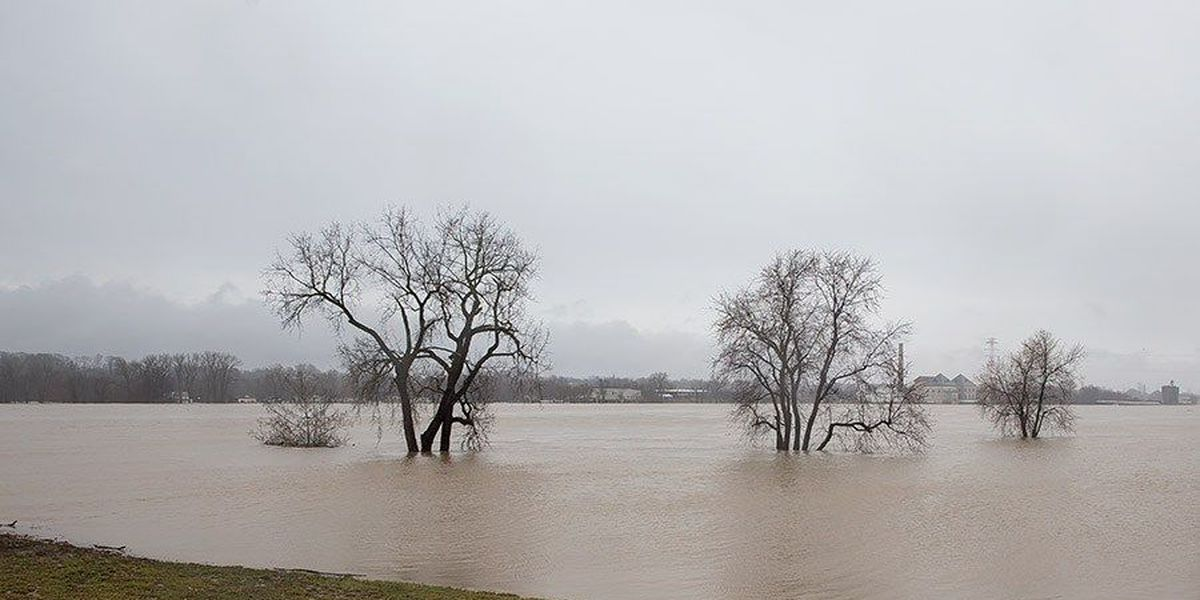 PHOTOS: Viewer images of flooding around WAVE Country