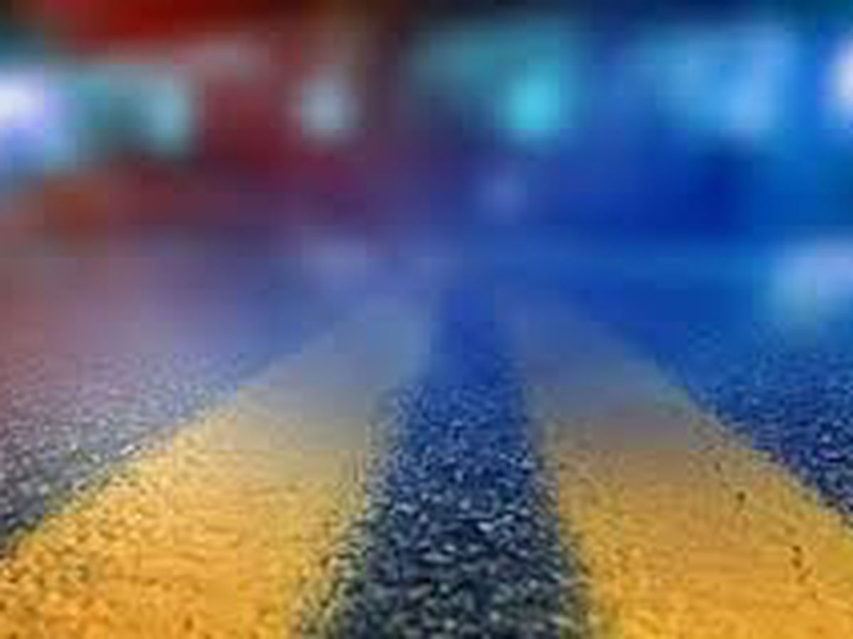 Pedestrian dies after being hit by vehicle