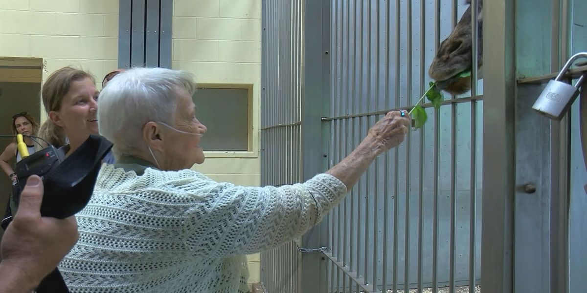 80-year-old woman visits zoo for the first time