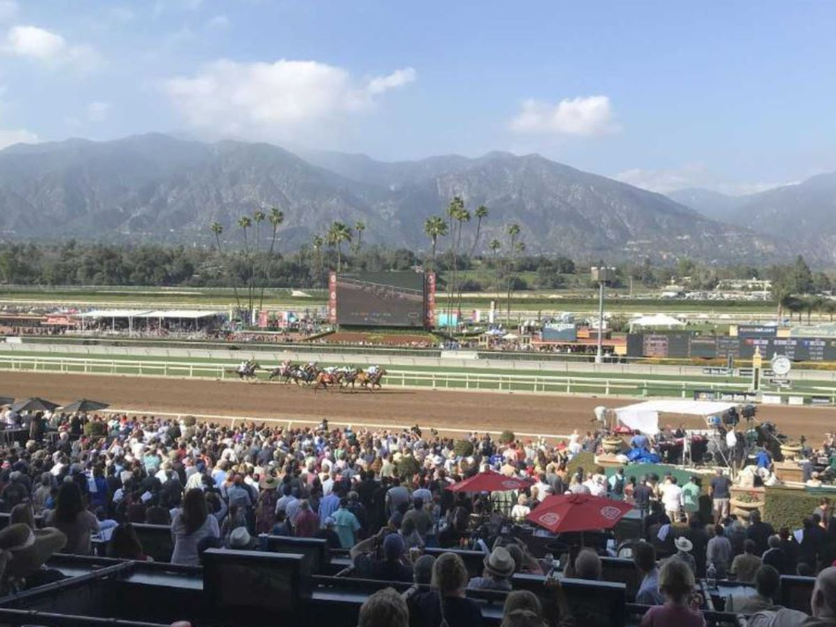 Another racehorse dies at Santa Anita Park