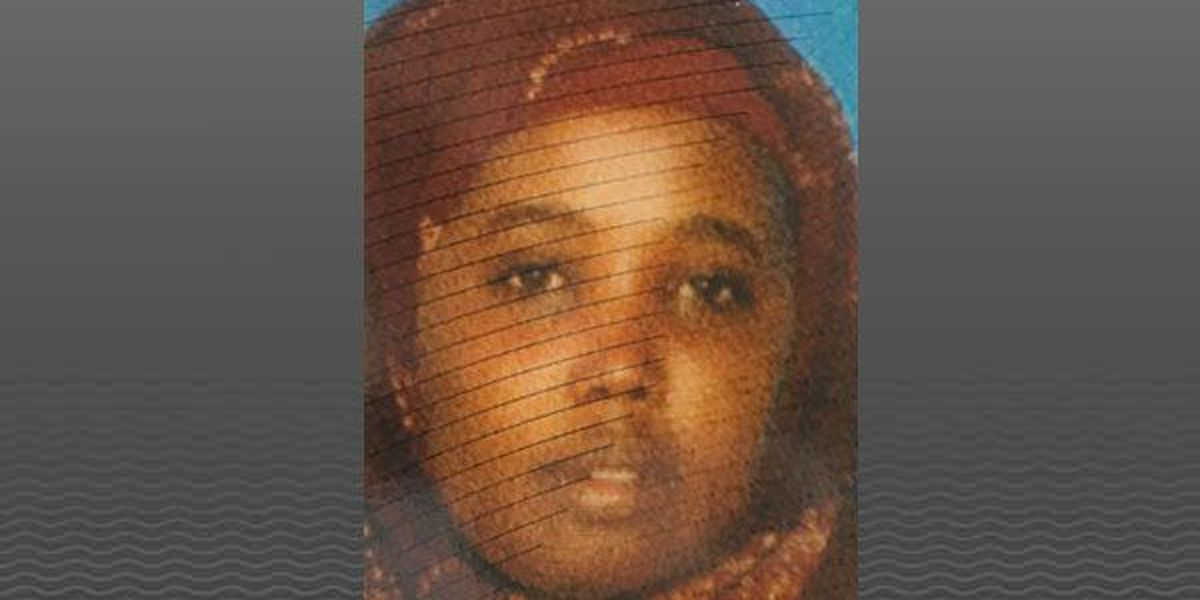 Somali community asks for help for children after mother of 5 hit by train