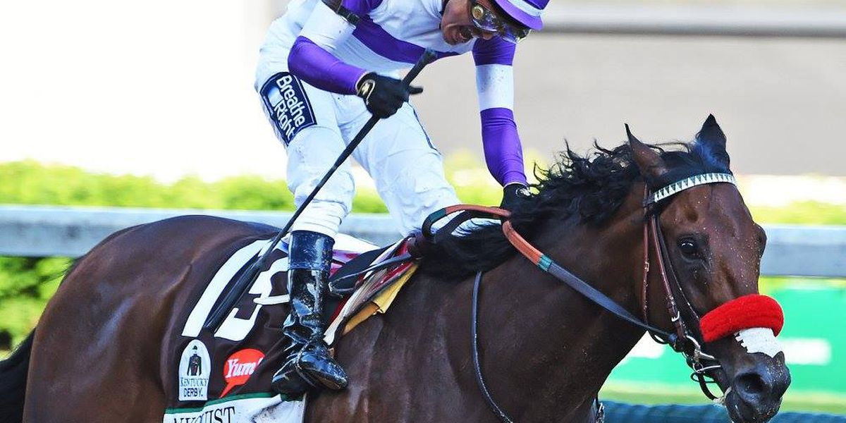 Nyquist won't run in Breeder's Cup