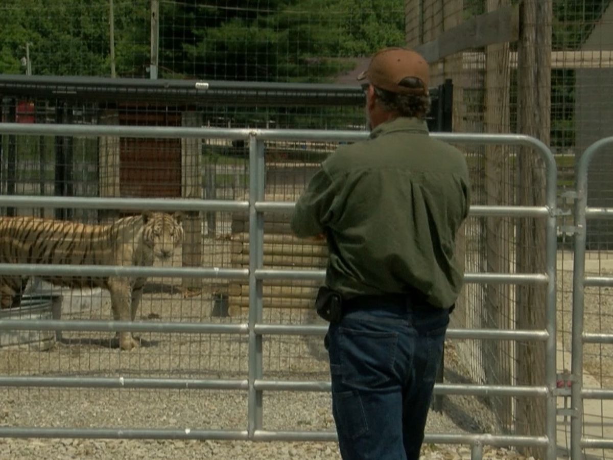 Amid ongoing legal battle, Indiana's own 'Tiger King' prepares to reopen Wildlife in Need