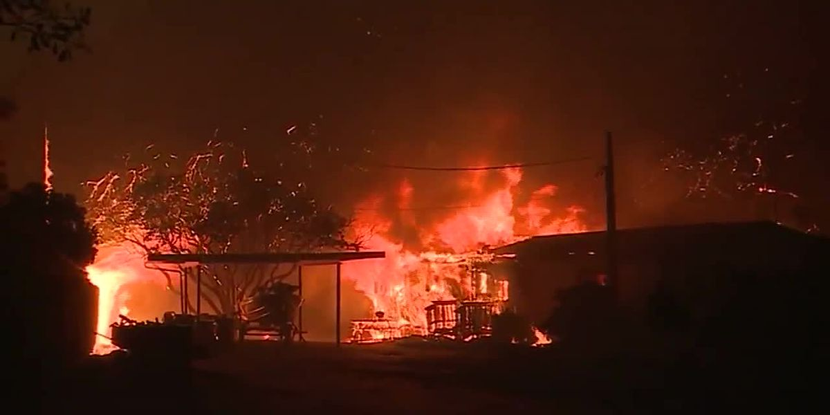 Deadly California wildfire bankrupts insurance company