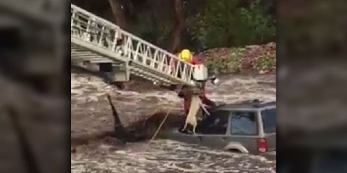 Video: 'Amazing' flood rescue of man, dog trapped in waters