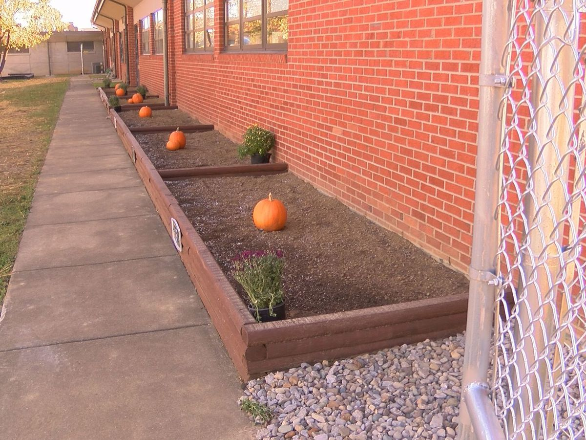 Renovations at Zachary Taylor Elementary School revealed