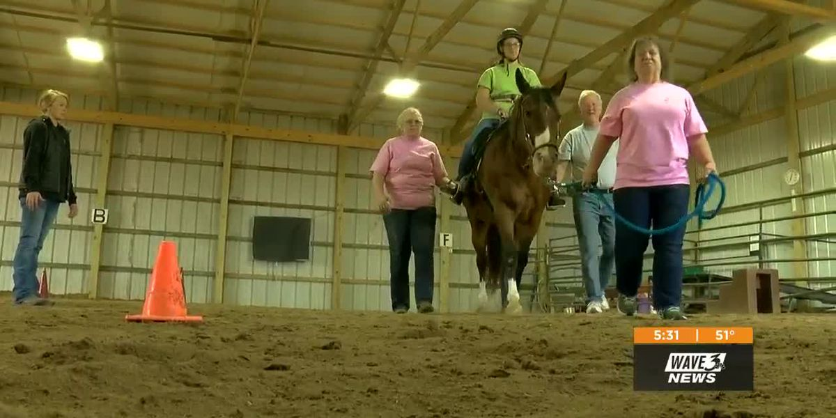 Seymour nonprofit helping people through equine therapy, programs