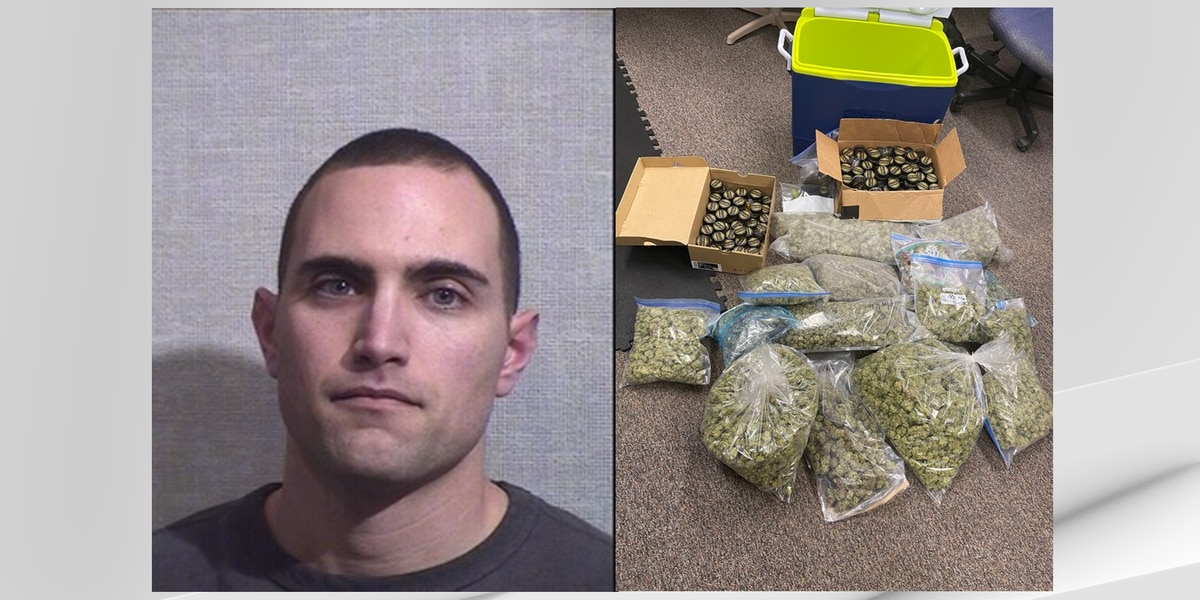 Indiana State Police arrest Michigan man in possession of eleven pounds of marijuana
