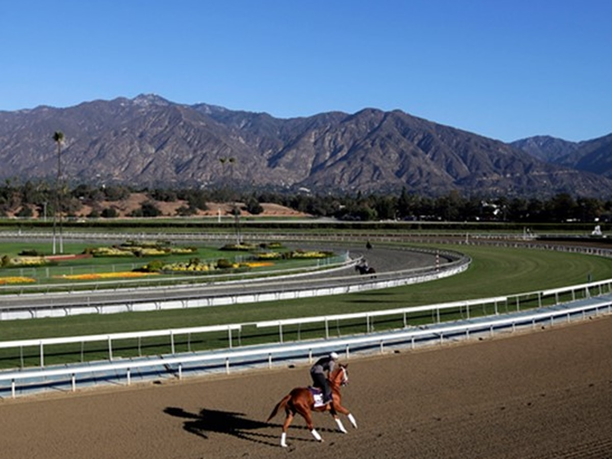Report: 30th horse dies at Santa Anita