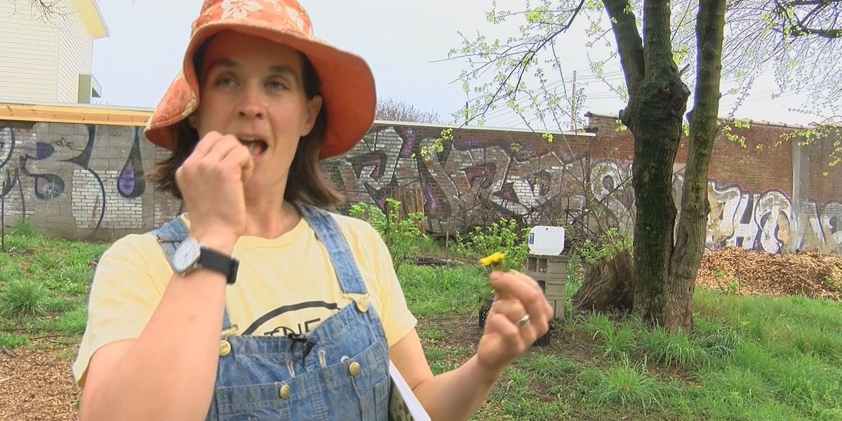 Urban forager finds food in unexpected places
