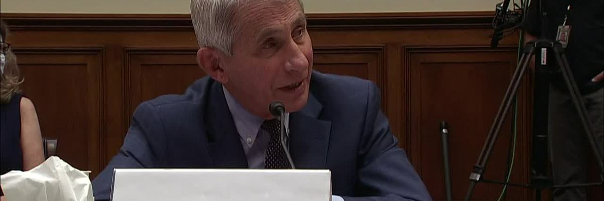 Fauci discusses hydroxychloroquine at House hearing