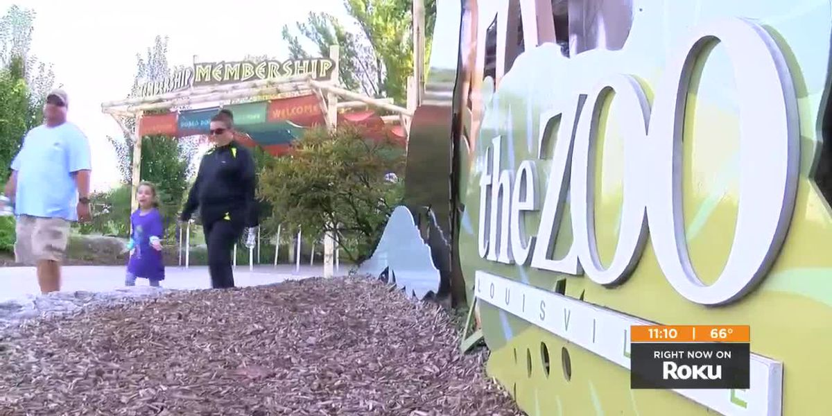 Louisville Zoo asks city for increased funding during budget shortfall