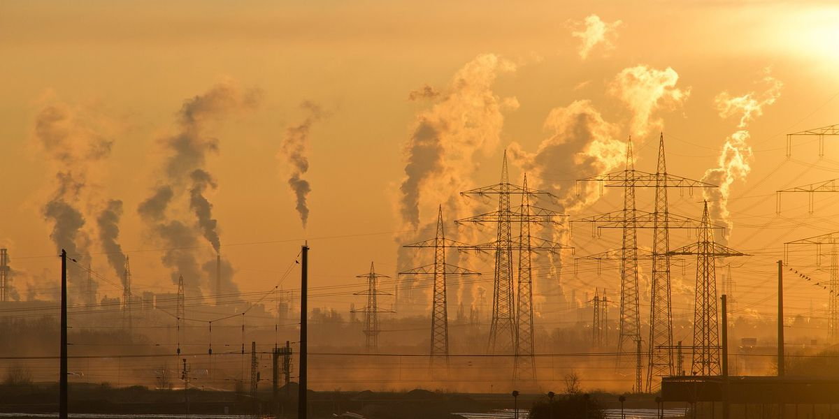 Study: Air pollution is bad for your brain