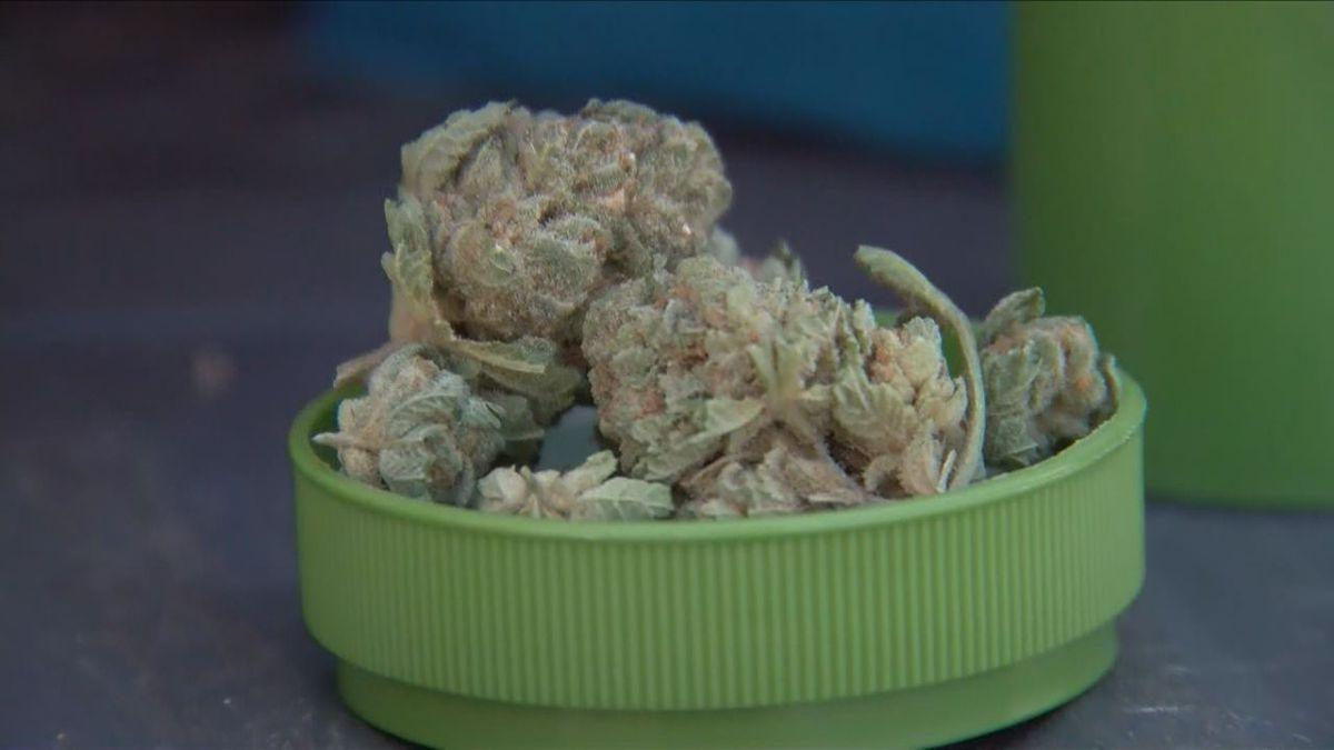 Marijuana advocates applaud proposed Metro ordinance