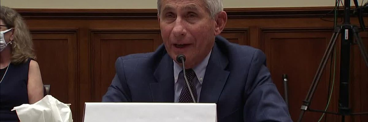 Fauci: US virus response compared to Europe, Asia