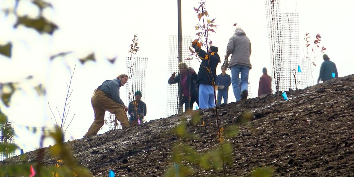 100 trees planted for Waterfront Botanical Gardens