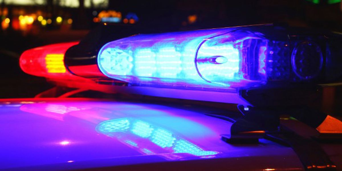 Bicyclist dies after being hit by vehicle