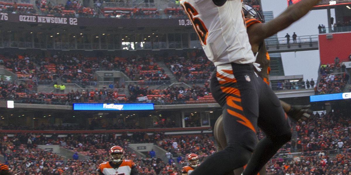 Bengals make final cuts, keep 3 quarterbacks