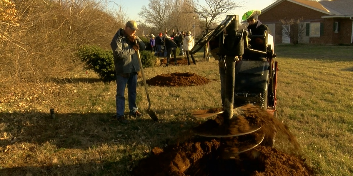 Tree planting initiative helps provide natural balance for teens in foster care