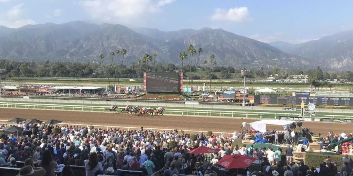 Santa Anita imposing new safety, welfare rules for horses