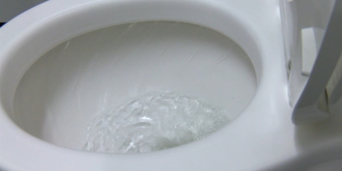 'Flushable' wet wipes cause sewer backups, MSD says