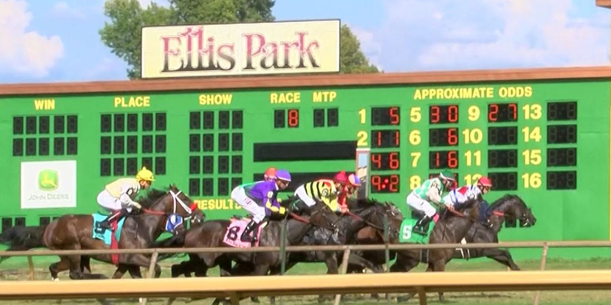 Ellis Park purchase on agenda for Kentucky Horse Racing Commission meeting
