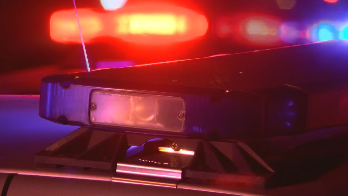 Man dies in early morning crash on Shelbyville Road