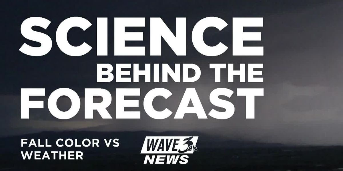 Science Behind the Forecast: How weather affects fall color
