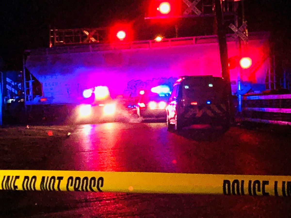 Pedestrian dies after being hit by train off Dixie Highway